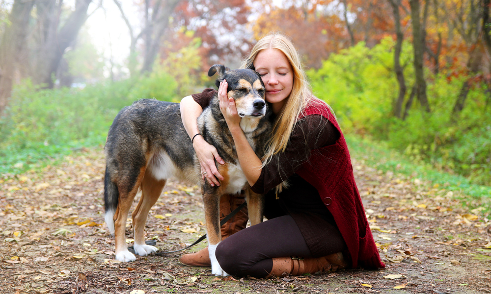 Ever consider adopting a senior dog? Here's why it's a great idea